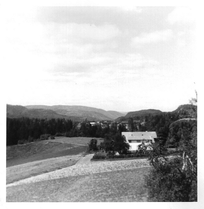 norweg71-10