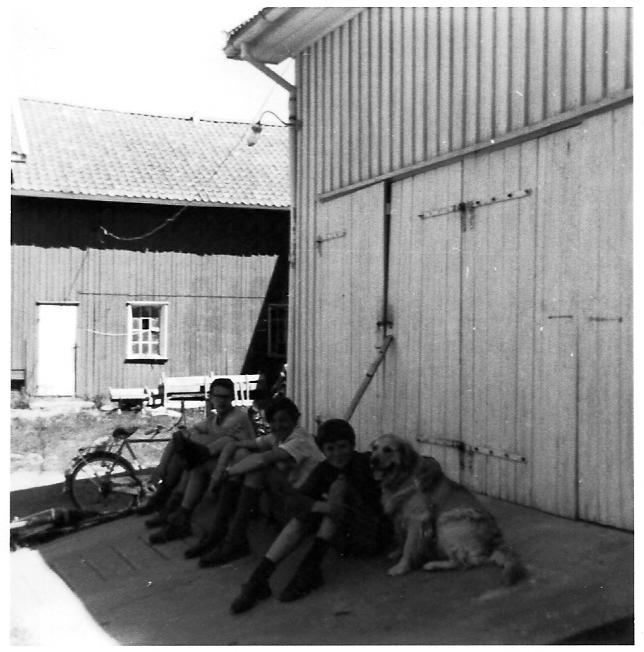norweg71-13